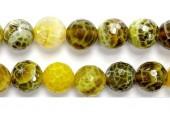 Perle Facettes Agate Lime Chauffee 10mm - Fil de 40 Centimetres